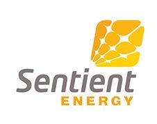 高機能モニタリングシステムで電力の信頼と安全を支える「Sentient Energy」