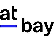 サイバーセキュリティの新しい保険At-Bay