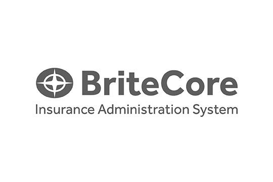 高いカスタマイズ性と品質基準。損害保険のSaaS型管理プラットフォームBriteCore